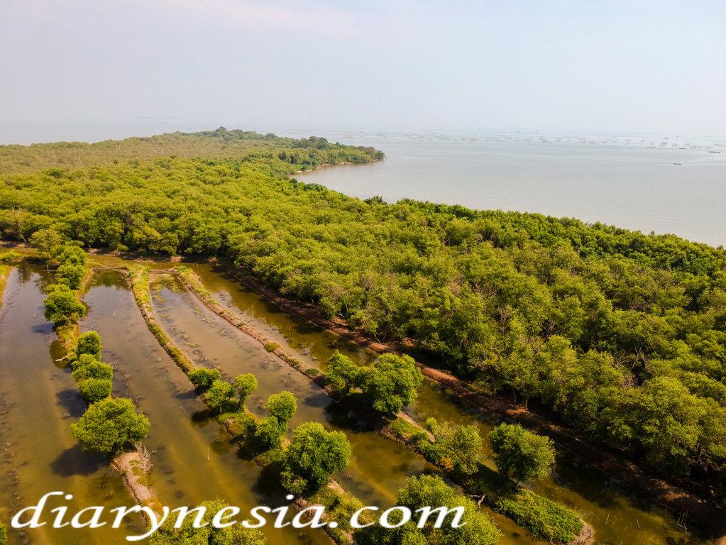 serang tourism, banten tourism, best place to visit in banten, diarynesia