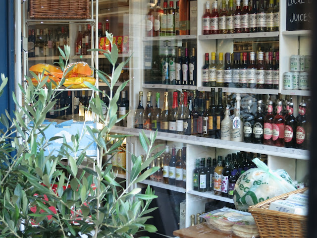 Bottles of wine seen through a shop window with small olive tree in foreground.