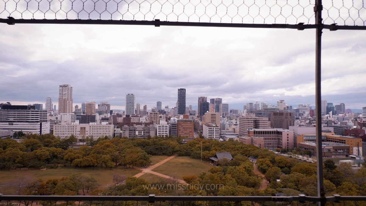 osaka castle view from the top