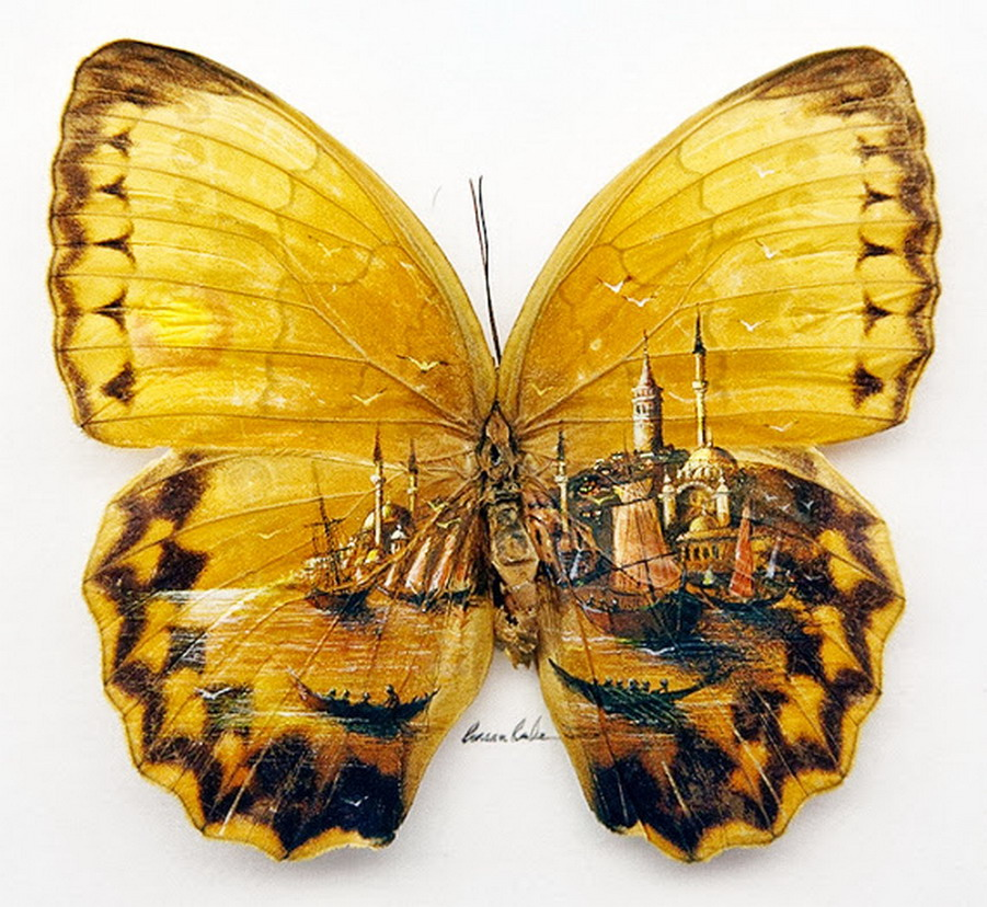 ===En Alas de mariposa=== Paisajes-pintados-mariposas-hasan-kale_1