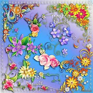 Bordas florais PNG