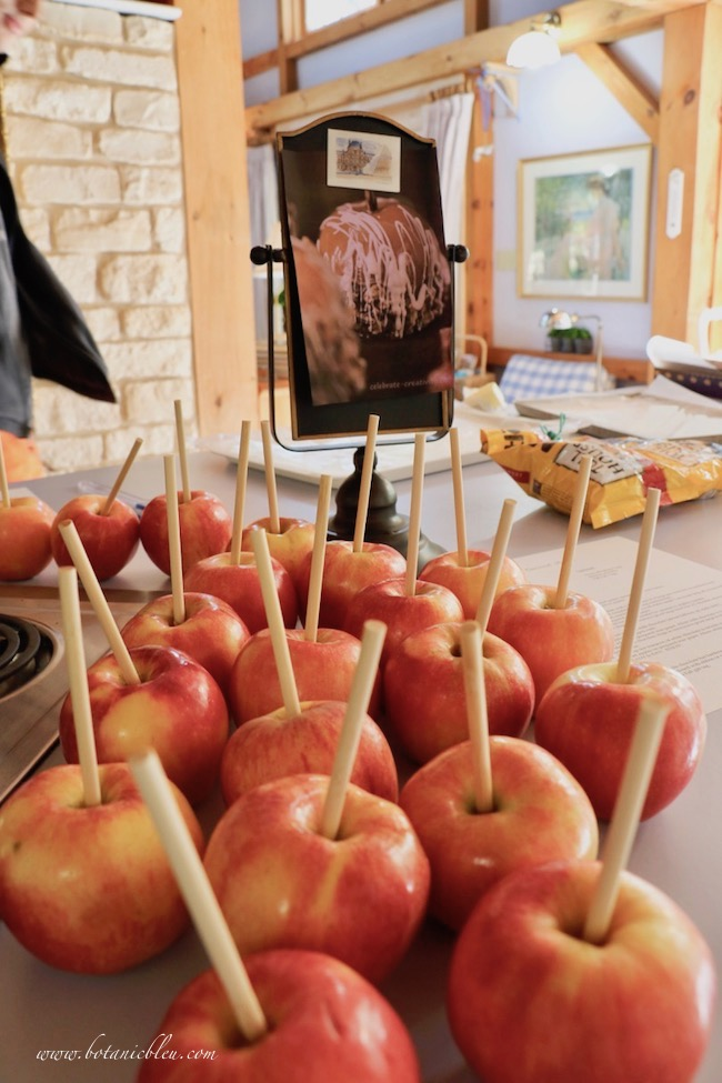 delicious double chocolate caramel apples start with wooden skewers