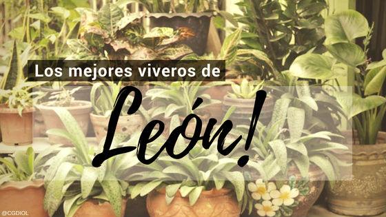 Listado de los Mejores Viveros de la Provincia de León, España, donde puedes comprar plantas para tus proyectos
