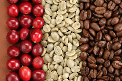 Red cherry, Coffee green and Organic Green Coffee