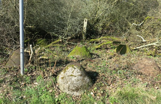 Photograph of some of the tank traps on the north side of Bradmore Lane. Photograph by Peter Miller