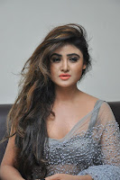 Actress Sony Charistha Latest Pos in Silver Saree at Black Money Movie Audio Launch  0020.jpg