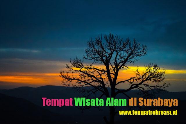 Tempat Wisata Alam di Surabaya