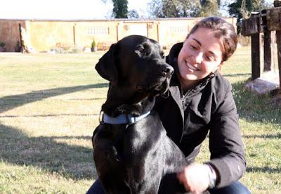 Ser dueño de un Labrador