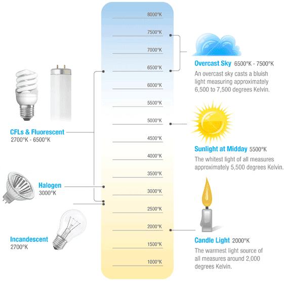 Naturalight Solar. Inc: More Coffee or More Sunlight?
