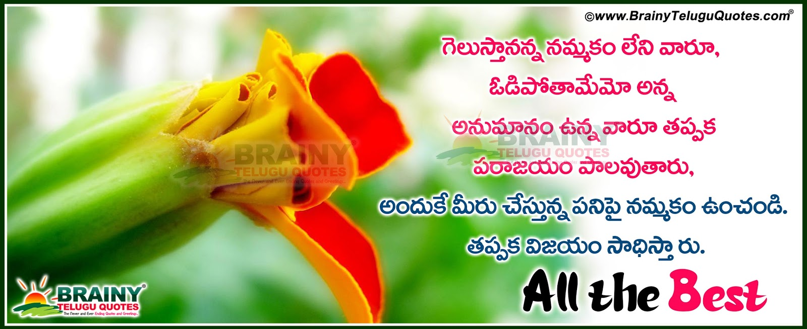 Telugu quotations and greetings wishes for all the best facebook inspirational quotes in telugu for facebook cover picsfriendship quotes for facebook cover pics kristyandbryce Image collections