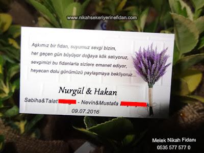 Davetiye Fidanı - Nurgül & Hakan Sakarya Sapanca 2