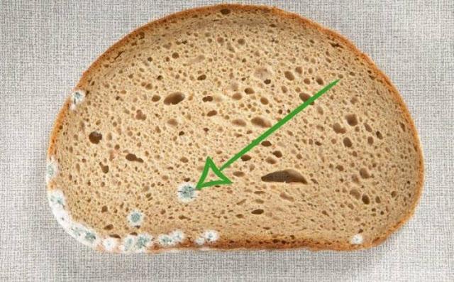 خطأ شائع نرتكبه جميعنا... لهذا السبب إحذروا إزالة الأجزاء المتعفنة من الخبز