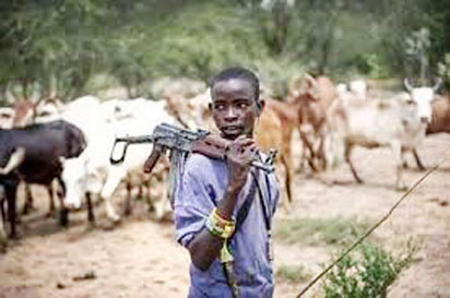 Fulani Herdsmen are more violent than Boko Haram- Amy chief