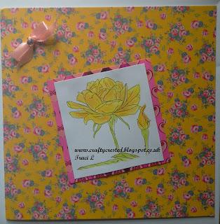 Morgans Fitzsimons Rose Flower