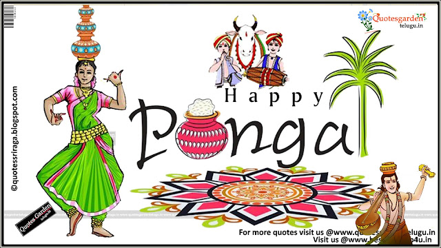 happy pongal 2016 greetings wallpapers