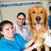 Trông giữ chó mèo dịp tết tại Phòng khám thú y Quận 9