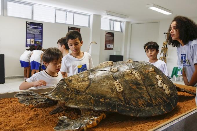Museu de Ciências Morfológicas da UFRN é um dos principais da América Latina