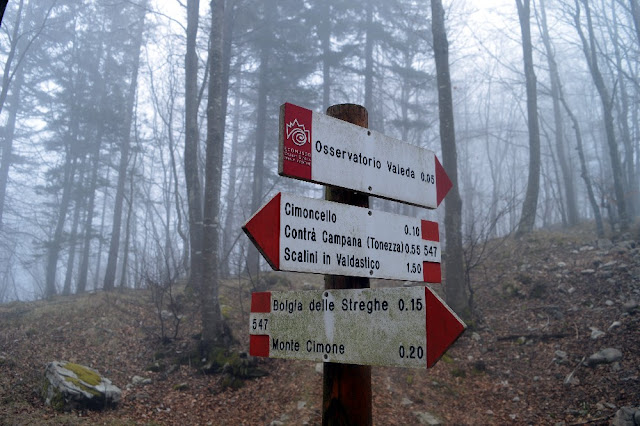 sentiero monte cimone tonezza