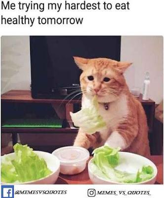 Eat Healthily Tomorrow
