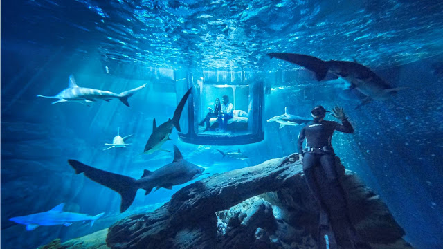 20 Most Bizarre & Unusual World Hotels that Actually Exist – Most Weirdest Hotels & Resorts
