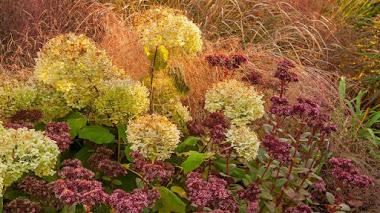Foto del día: tres colores de otoño en Rye Hall Farm