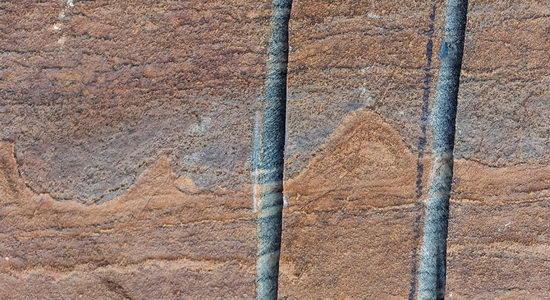 Laporan Penelitian Pencairan Es Greenland Membuka Perburuan Kehidupan Tertua Bumi
