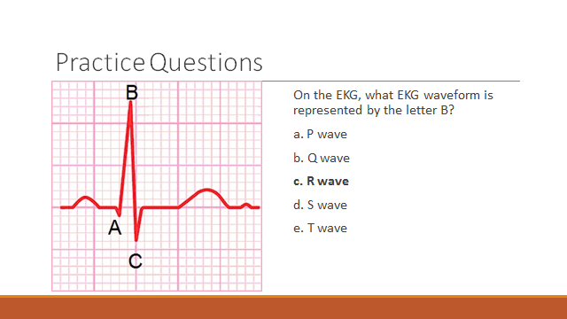 ekg practice questions Read and download practice questions answers on ecg interpretation free ebooks in pdf format - fetal pig dissection answers key pappersvaggar john ajvide lindqvist.