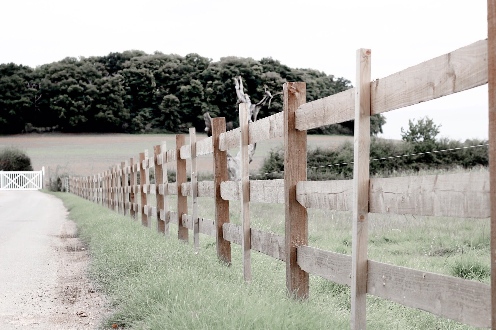 English Countryside Wooden Fences in Field