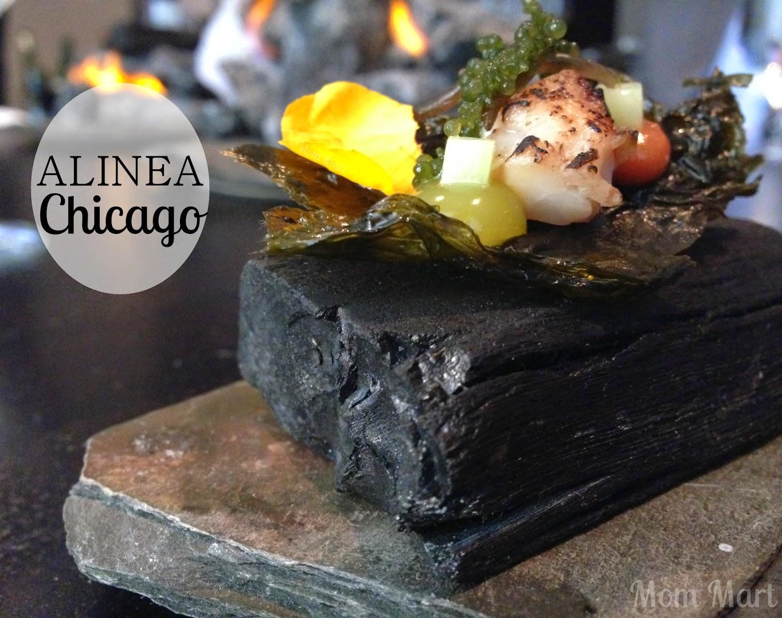 Restaurant Experience Chicago