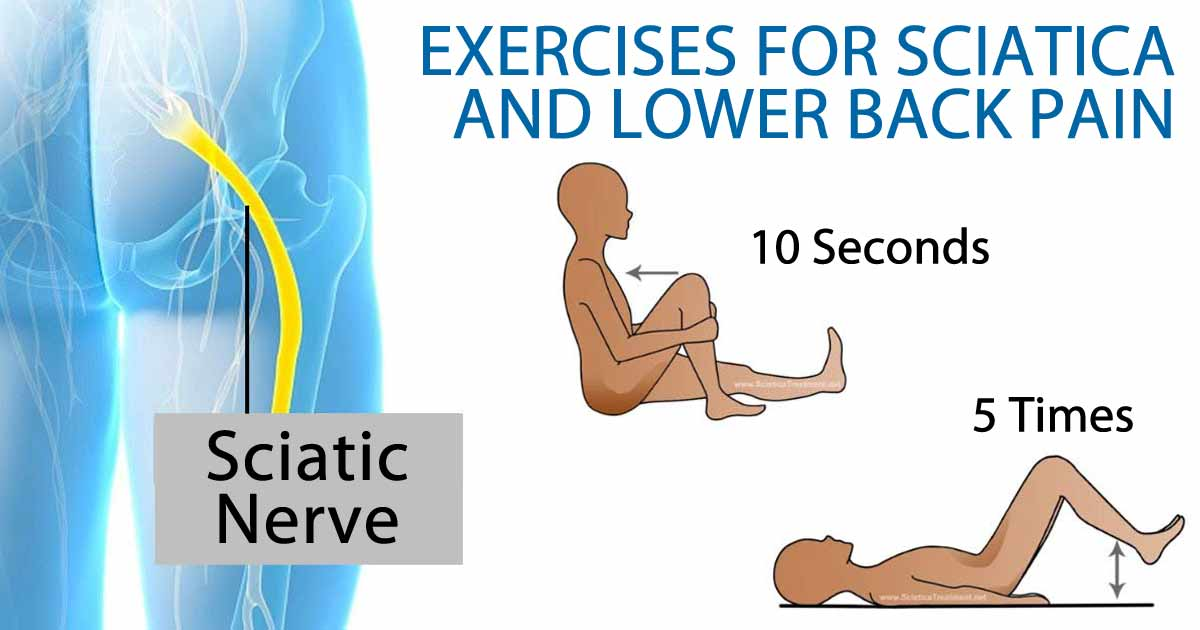 The Best Exercises For Sciatica And Lower Back Pain - DIY ...