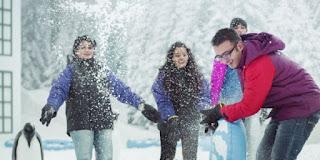 snowpark imagica pure snow