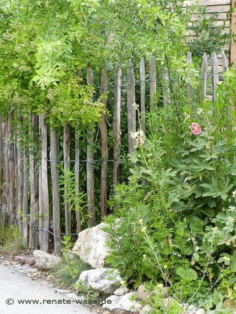 Gartenzaun, Kastanienholz