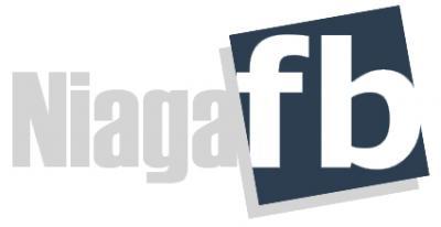 TERBARU ! NiagaFB Bongkarkan Teknik Pemasaran Terkini TANPA FB Ads