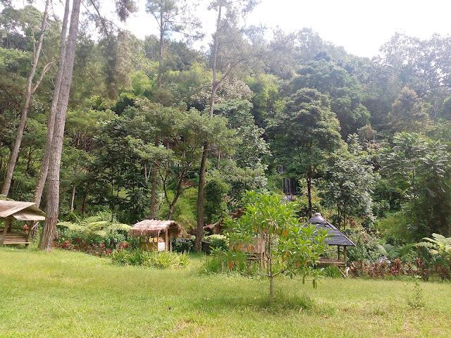 Banyuwangi Tourism
