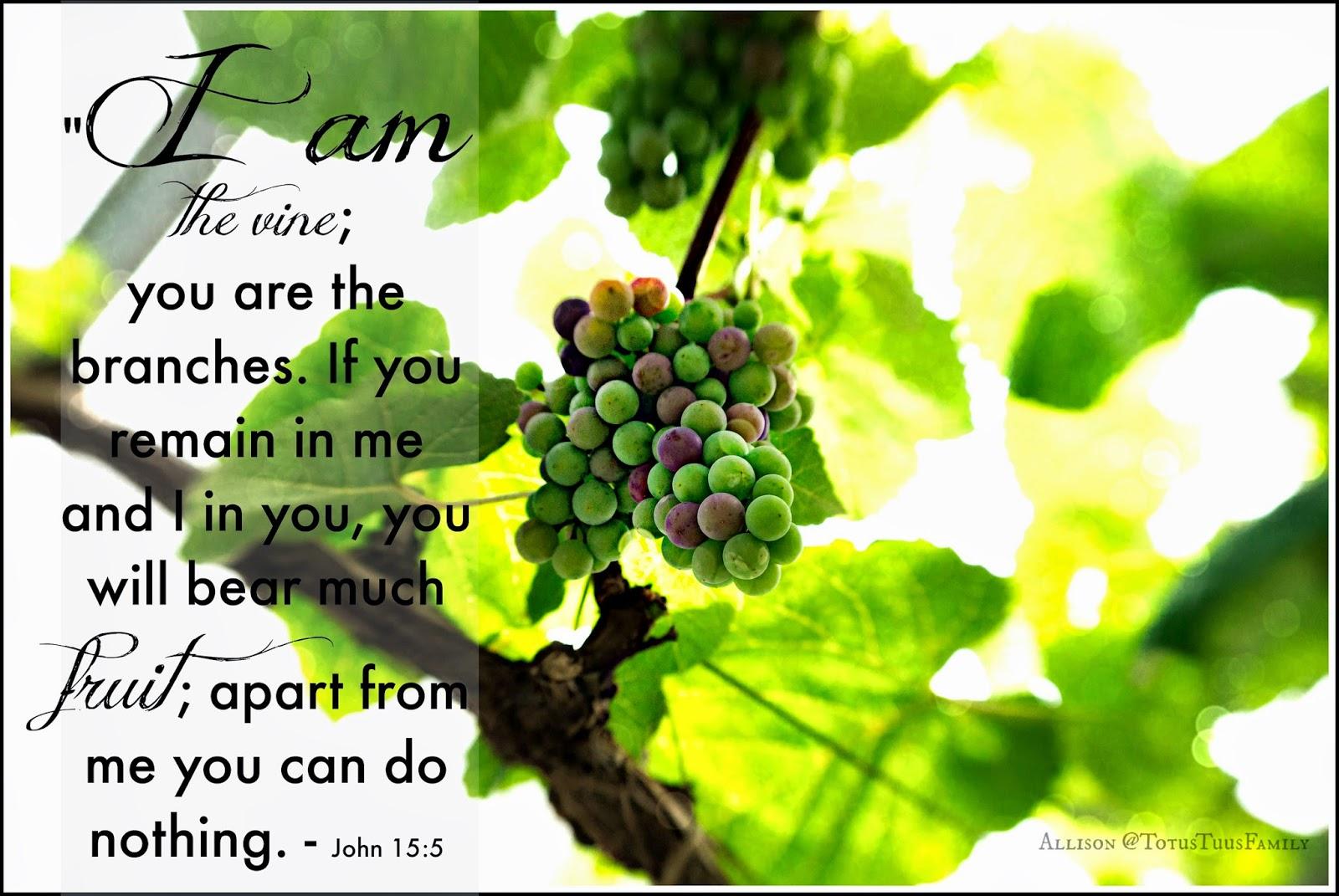 John 15 5 The Vine Bearing Fruit Totus Tuus Family