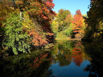 Central Park New York City Autumn and Fall Colors Photo 2