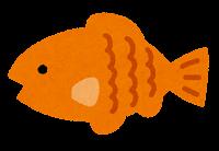 小魚のイラスト(オレンジ)