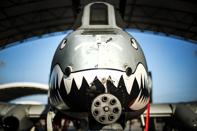 PHOTO COLLECTION OF USAF A-10 THUNDERBOLT II 'WARTHOG'