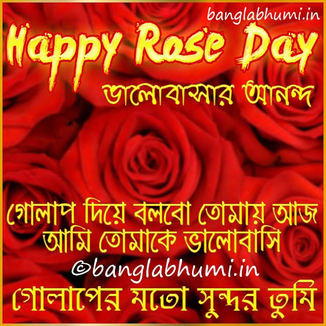 Happy Rose Day Bengali Wishing Wallpaper Free Download