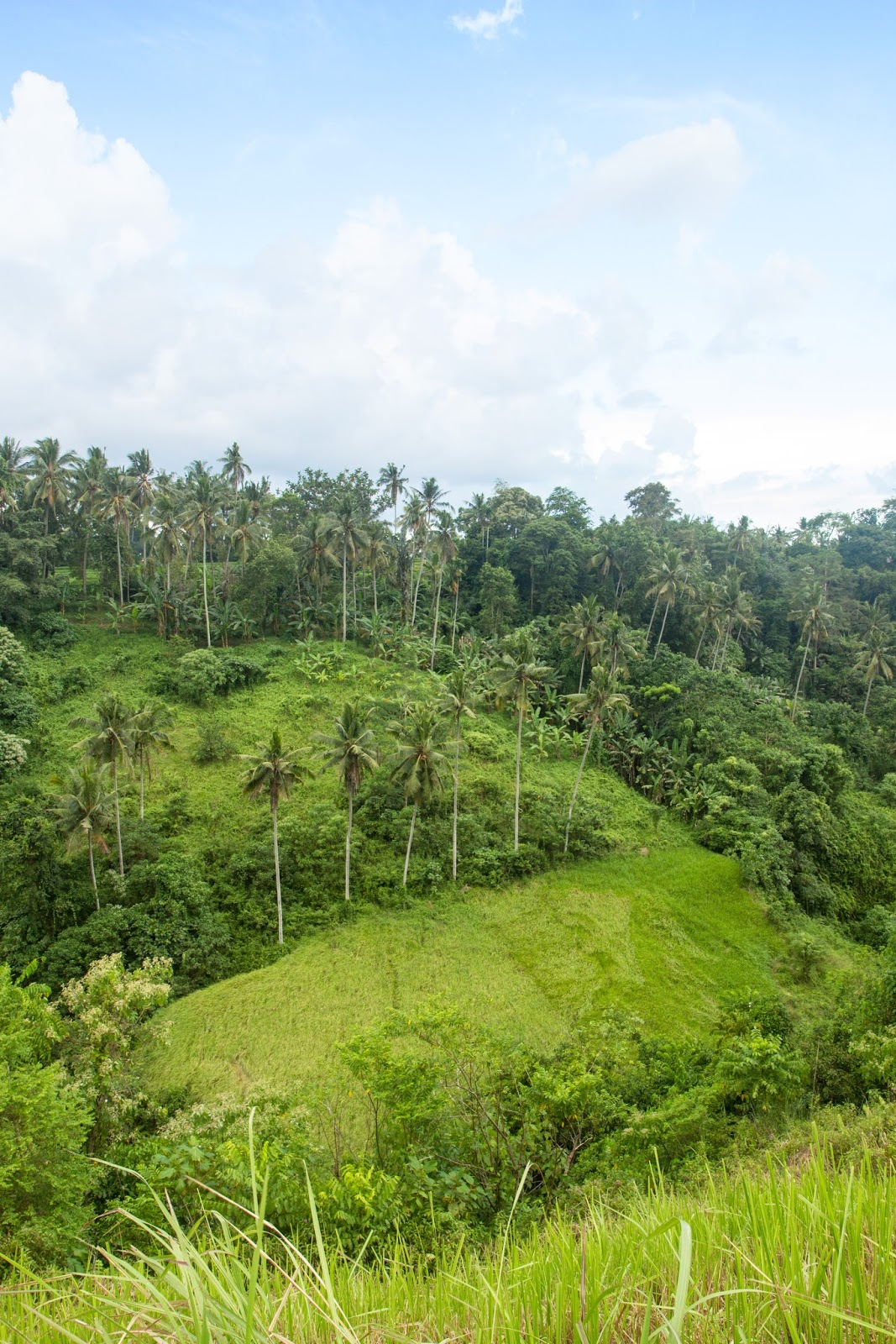 The beautiful Ridge Walk in Ubud, Bali