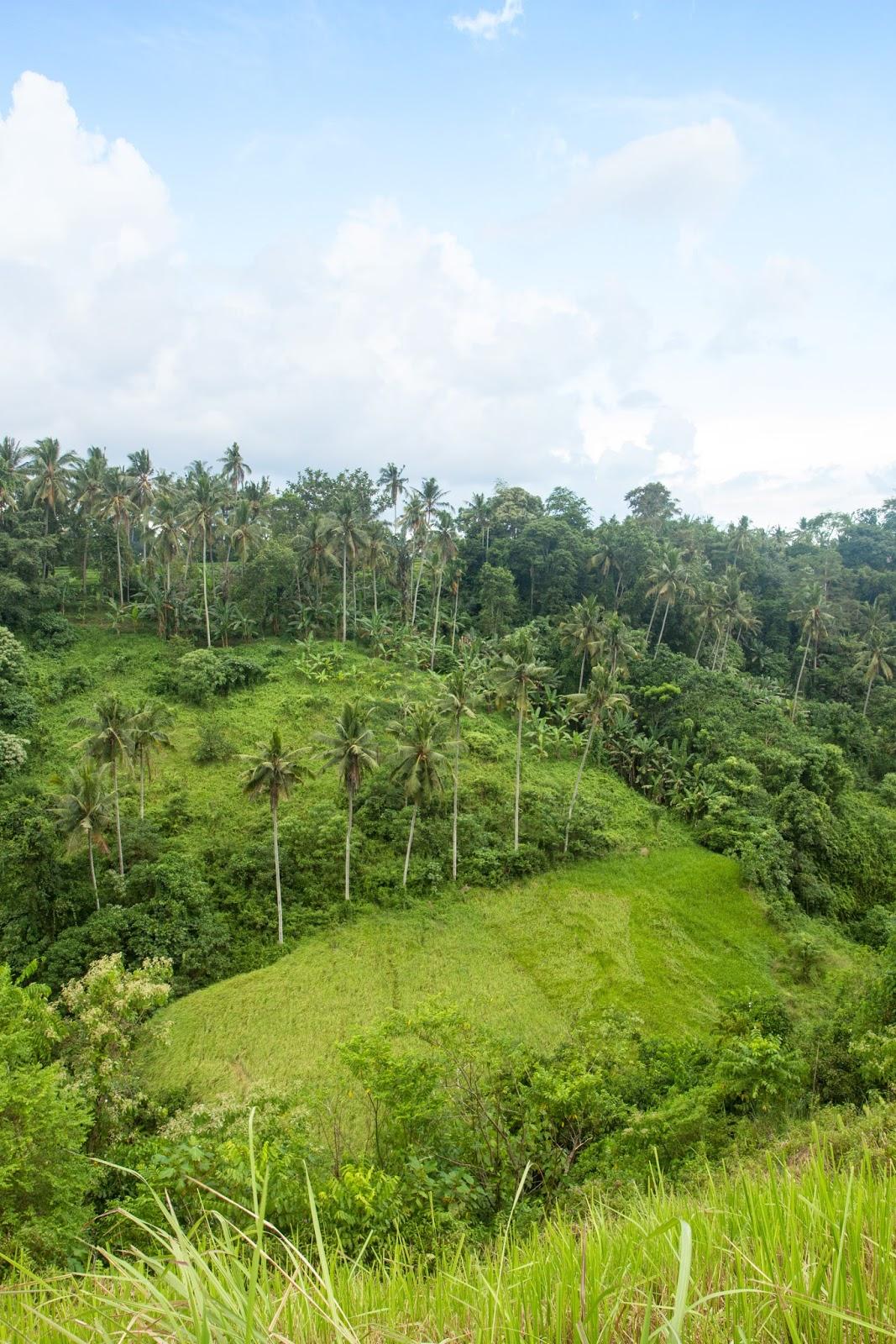 The beautiful Ridge Walk in Ubud, Bali