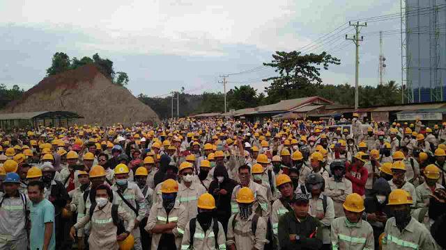 Ribuan Buruh di Morowali Mogok Kerja, Tuntut Kenaikan UMSK dan Tolak Dominasi Pekerja Asing