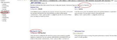 SAP Hana Authorization Trace