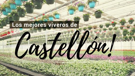 Listado de los Mejores Viveros de la Provincia de Castellon, España, donde puedes comprar plantas para tus proyectos
