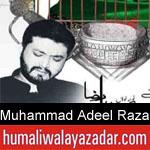 https://www.humaliwalyazadar.com/2018/09/muhammad-adeel-raza-nohay-2019.html