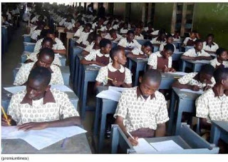 animal husbandry essay objective waec expo answers