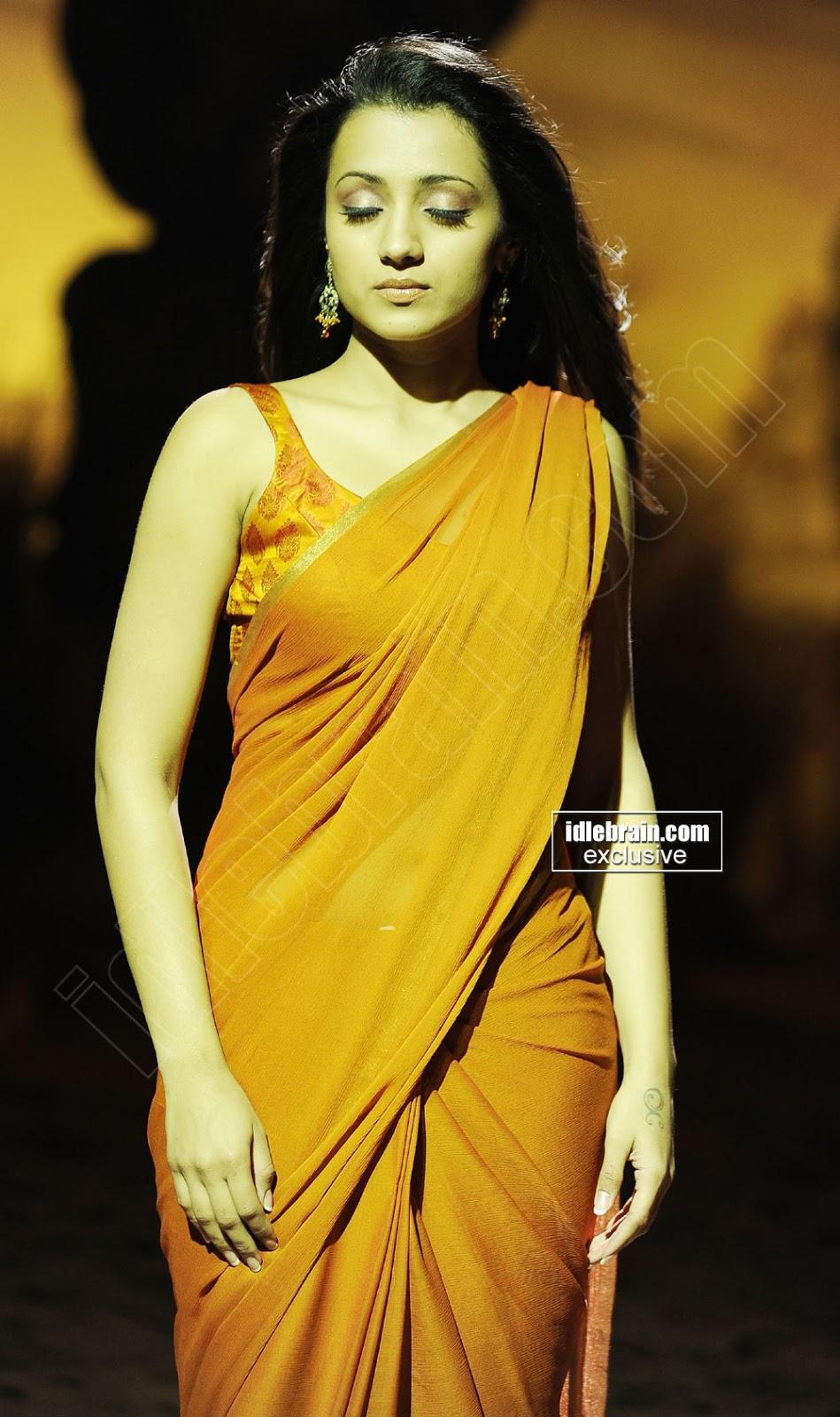 Trisha Krishnan In Saree Horny Expressions - Sabwoodcom-1700