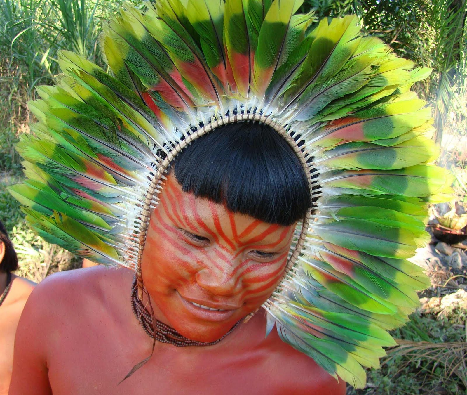 Wildlife, History And Adventure In The Amazon: June 2011