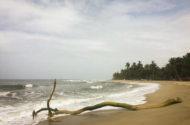 Tayrona, Colombia