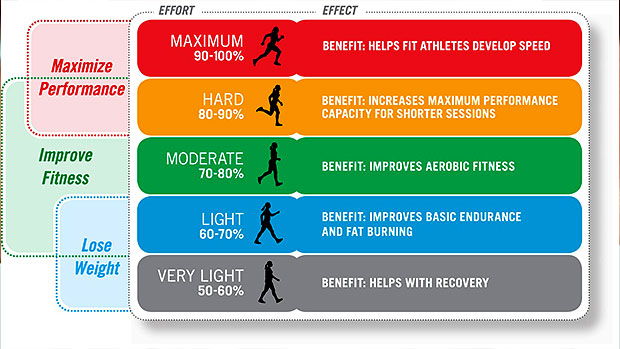 Fitness Wharf Exercise With Target Heart Rates